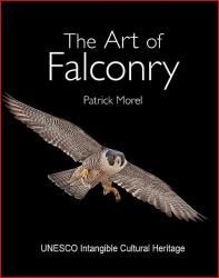 The Art Of Falconry