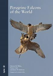 Peregrine Falcons of the World